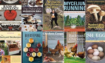 We're all about mushrooms, chickens and beekeeping!
